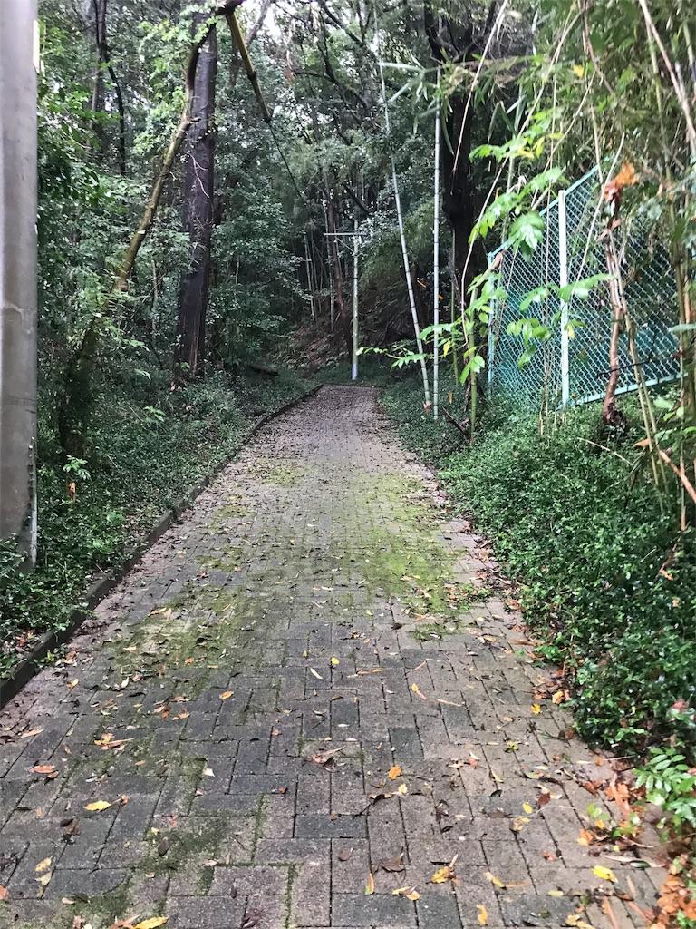 f:id:arisugawag:20180927212750j:image