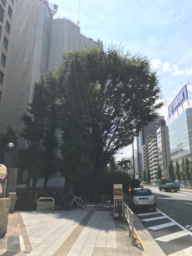 f:id:arisugawag:20181205110241j:image
