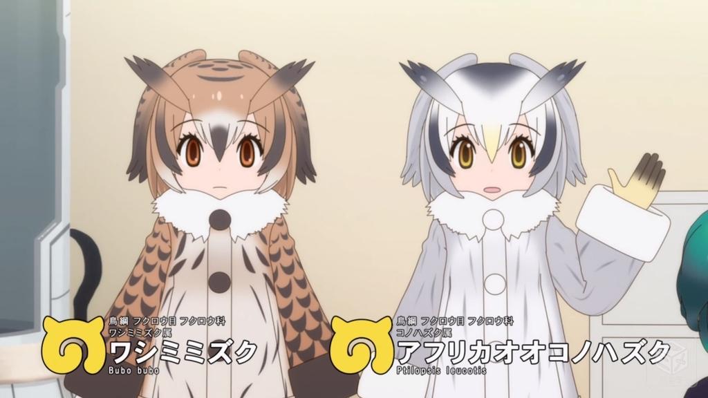 f:id:aritsuidai:20190219095842j:plain