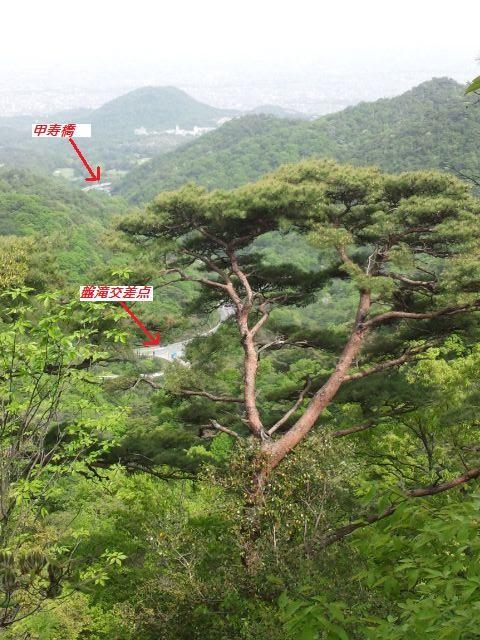 f:id:arkibito:20110515142033j:image:left