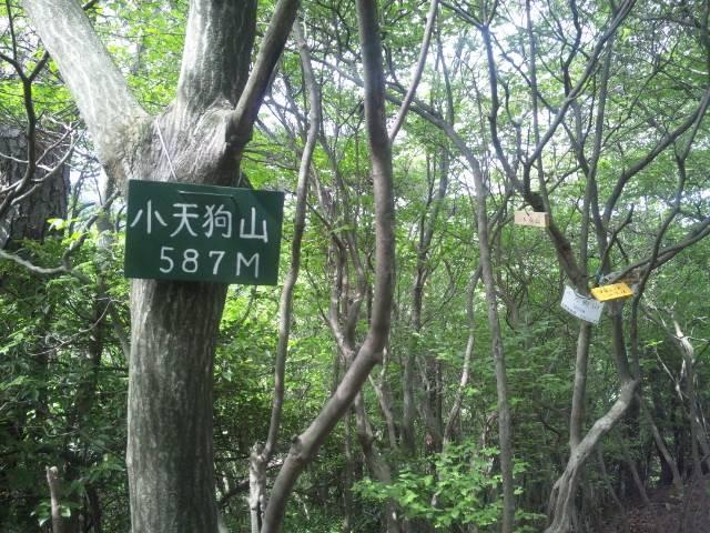 f:id:arkibito:20110515143130j:image:left
