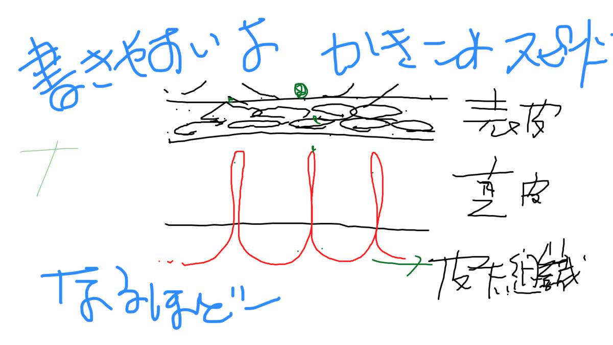 f:id:aromaicca:20200420091844p:plain