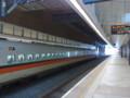 20090503556.jpg
