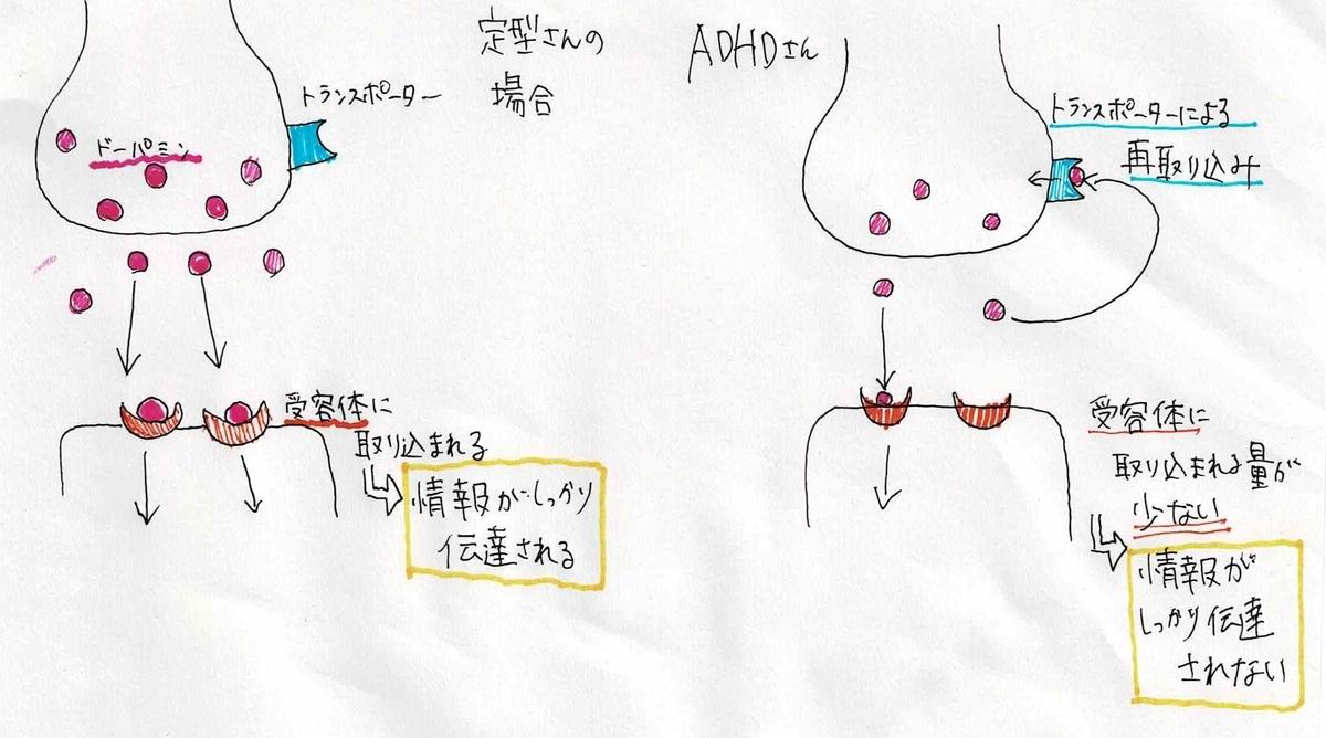 f:id:around40sakura:20201006143548j:plain