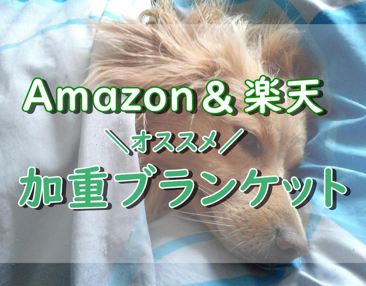 f:id:around40sakura:20201111142605j:plain