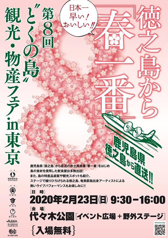 tokunoshima-festival