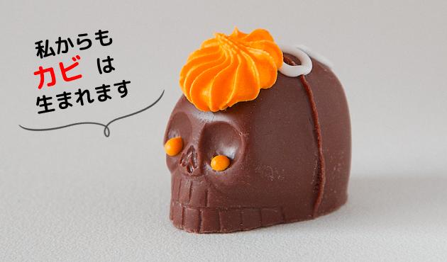 チョコレートカビ