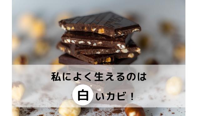 チョコレート白いカビ