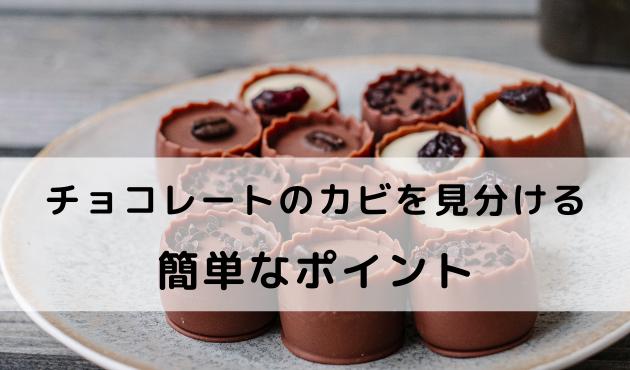 チョコレートカビの種類