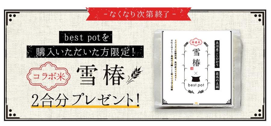 bestpot(ベストポット)雪椿プレゼント
