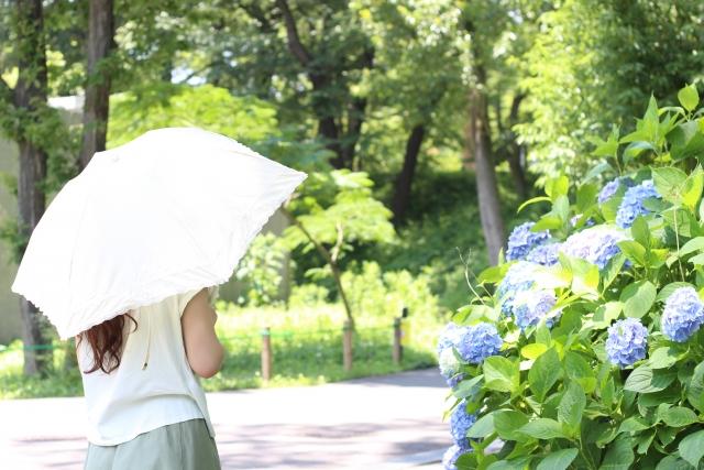 f:id:aroundforty-hitorikurashi:20190528213411j:plain
