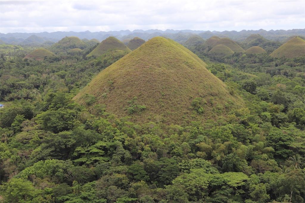 チョコレート色に染まる丘の全体を見渡せる丘。