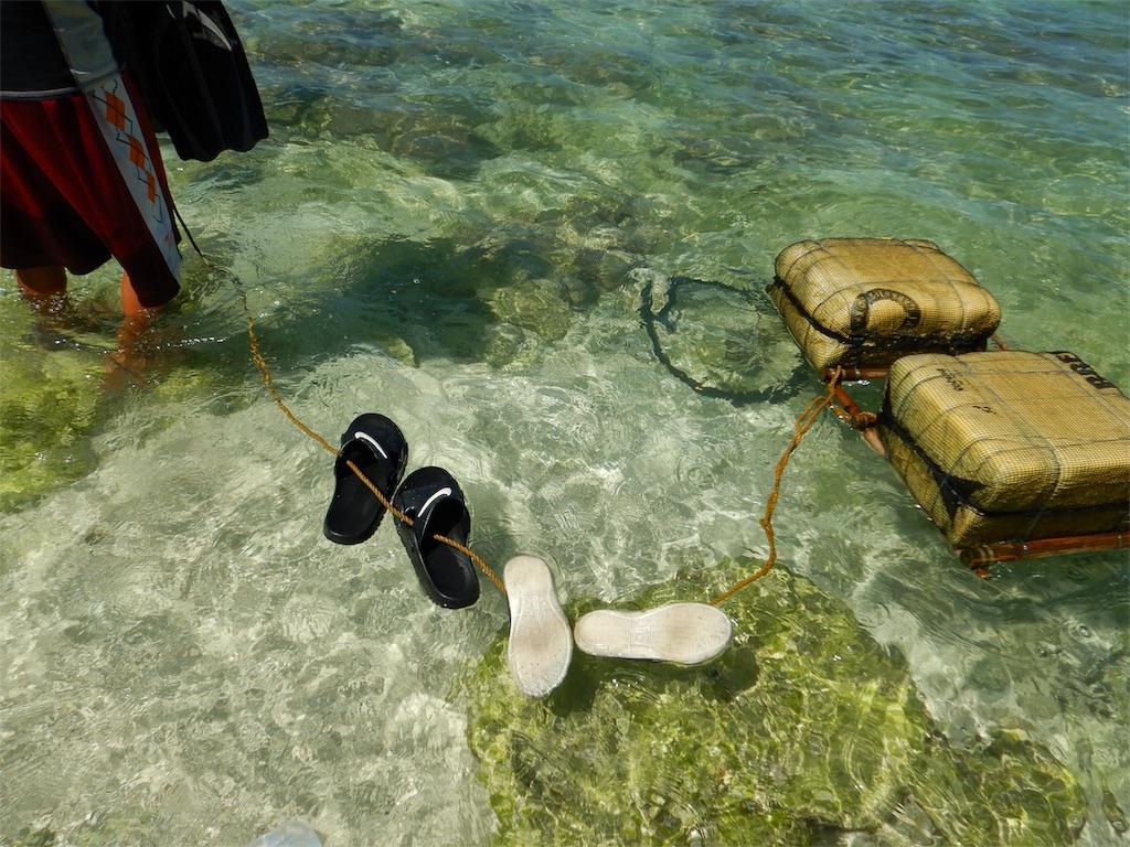 moalboal-snorkeling-sardine