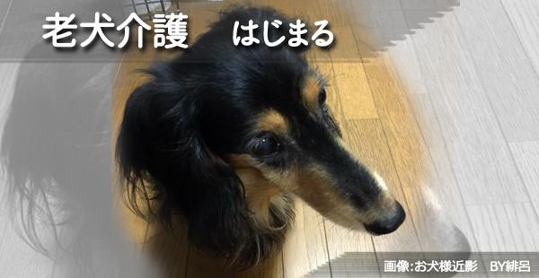 f:id:art-hiro-b:20160711215001j:plain