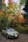 本谷川渓谷の紅葉1