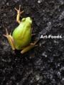 Frog_090830