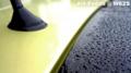 雨の朝_100507