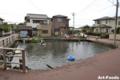 泉の里親水公園_100815_1