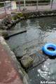 泉の里親水公園_100815_2
