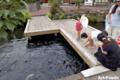 泉の里親水公園_100815_4