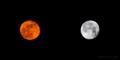 金の月と銀の月_110518-19