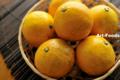 ナゾの柑橘_110521-1