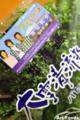 北海道産パセリ_111219