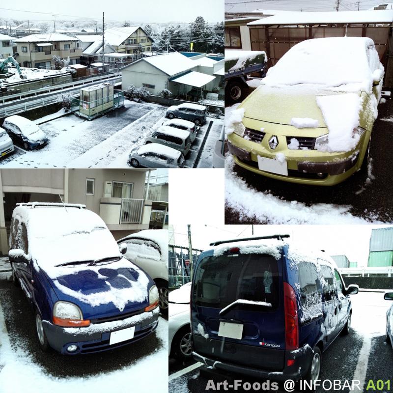 雪の朝_120117