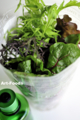 ブーケのような活野菜セット-1_120504-1