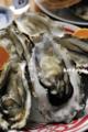 殻つき生牡蠣from石巻_121016