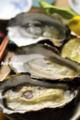 殻つき生牡蠣_121216