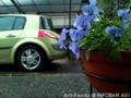 雨の庭とメガーヌ_121230