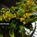 アスパラ菜_131030