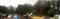 ヤゴセコーのある杉林