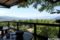 ぶどうの丘レストランからの眺め_140511
