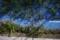 ご近所散歩-波トタンの壁_140921