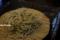そば半の十割蕎麦_141109