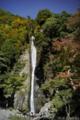 見神の滝_151018