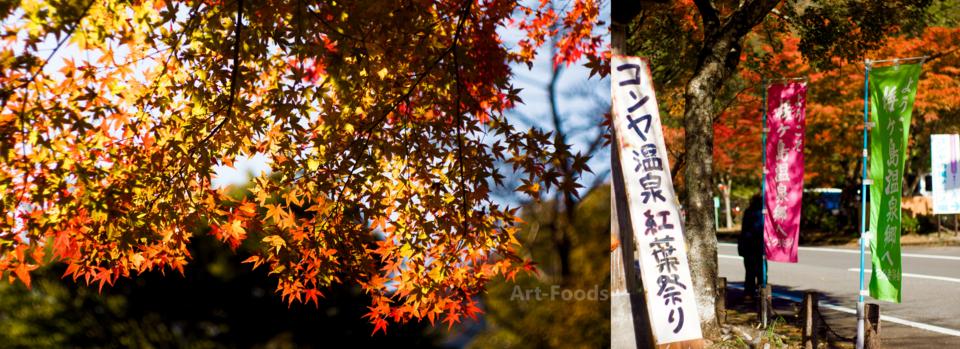 コンヤ温泉紅葉祭り_161113