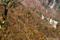 梅ヶ島温泉の紅葉-1_161113-2