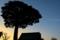 蔦のカラーパレット_161203-1