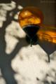 楓の樹の影とエントランス灯_161225