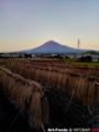日没の富士山と稲藁干し_171026
