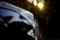 夕方の木漏れ陽とキャプチャー_180204