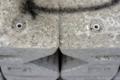 Face-012_コンクリートのウーパールーパー_180202