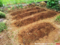 菜園の土起こし_180502