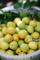 梅の実収穫_180617