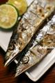 新物秋刀魚_180831