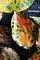 極彩色な柿の葉_180929