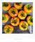 柿の実収穫_180929